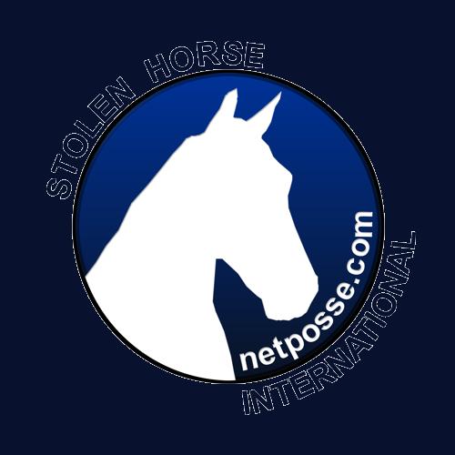 NetPosse Logo