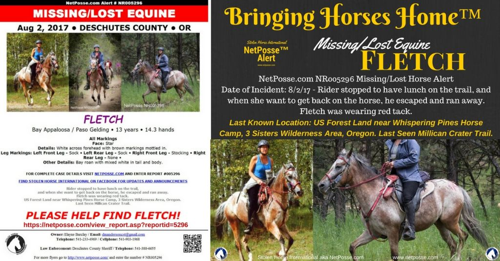 Missing/Lost Equine - Fletch Is Fully Tacked - Oregon