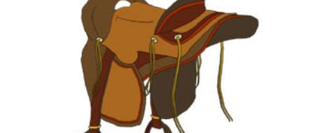 Woman caught in Texas for stealing saddles