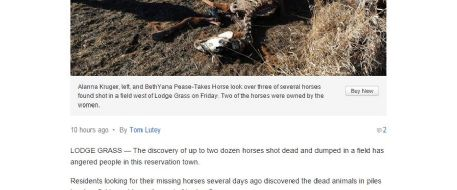 In Lodge Grass, Montana,  a field of dead horses angers neighbors