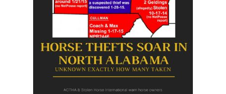 Alabama Gets Hit Hard With Horse Theft