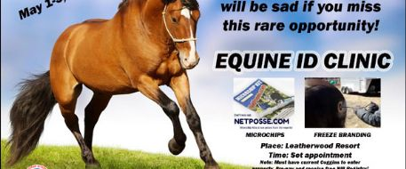 Rare NC Equine ID Clinic May 1-3, 2015