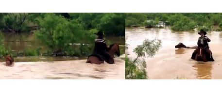 31 horses saved from flooding river by Texas cowboys on Mother's Day 2015