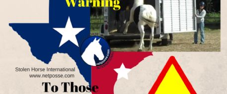 TEXAS-We Have A Horse Theft Problem