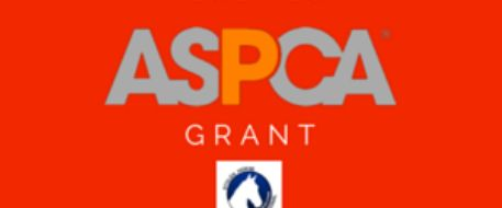 Stolen Horse International Recipient of ASPCA Equine Groups Grant.