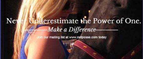 What Makes A NetPosse?