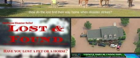 Stolen Horse International Helps Texas Flood Victims