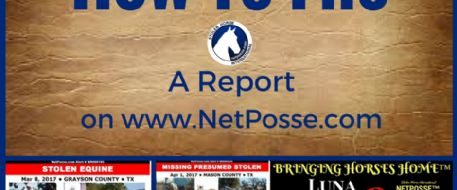 How To File A Report With NetPosse.com
