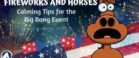 Horses and Fireworks - Calming Tips For the Big Bang Event