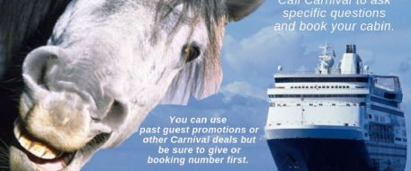 Horse Lovers Cruise For Friends and Family Press Release