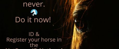 NetPosse ID Registration for Horses and Pets
