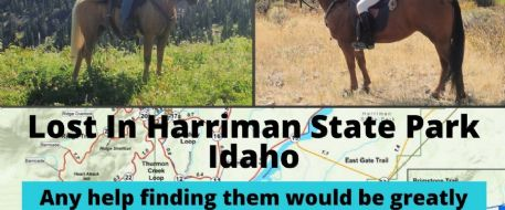 Horses Lost In Harriman State Park Idaho