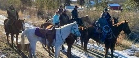 Silvers, a Chelan Horse Missing in the Mountains for 10 Days is Home!