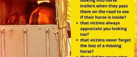 Stolen Horse Remembrance Month For Missing Horses