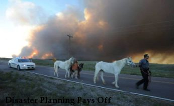 Disaster Planning Pays Off