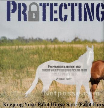 Keeping Your Paint Horse Safe (Paint Horse Journal)