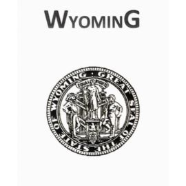 2015 Official Wyoming Brand Book