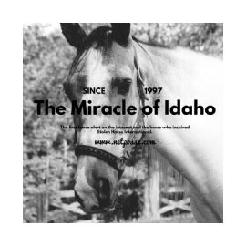 The Miracle Of Idaho