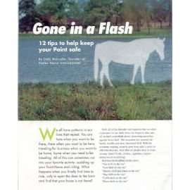 Gone In A Flash - 12 tips to help keep your Paint horse safe