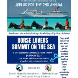 2021 Horse Lovers Summit On The Sea Flyer