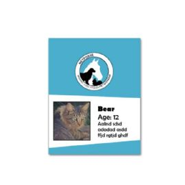 Avid Microchip Kit with Registry for Dog/Pet