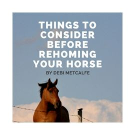 Things To Consider Before Rehoming Your Horse