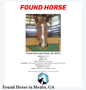 Found Horse in Menlo, GA