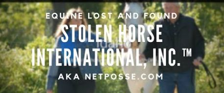About Stolen Horse International