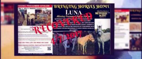 Welcomed Home by Stolen Horse International Inc the first half of 2017