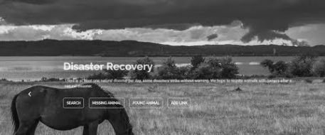 Free Disaster Directory for Lost and Found Animals
