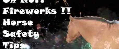 Oh No! Fireworks!!! Horse Safety Tips