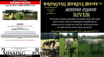 MISSING POSSIBLY STOLEN RIVER RECOVERED 8/29/17 Near knoxville , TN, 37849