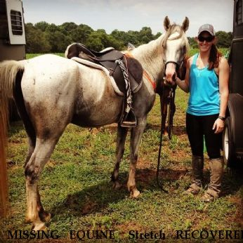 MISSING EQUINE  Stretch RECOVERED Near Rockwell, NC, 28138