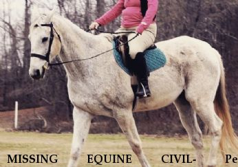 MISSING EQUINE CIVIL- Pen Dragon, LOCATED/SAFE 3/25/18 Near Waverly Hall, GA, 31831