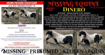 MISSING PRESUMED STOLEN EQUINE Loco Dinero, $1000.00 REWARD RECOVERED! 7/6/2018 Near Alvin, TX, 77511