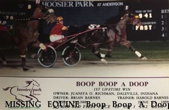MISSING EQUINE Boop Boop A Doop, LOCATED Near Alexandria, IN, 46001