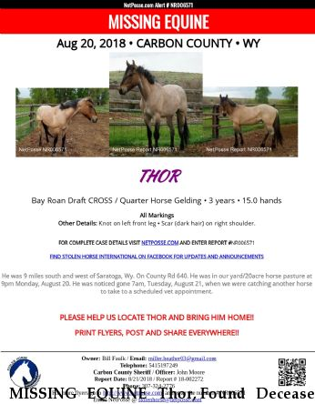 MISSING EQUINE Thor, Found Deceased Near Saratoga, WY, 82331