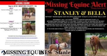 "MISSING EQUINES- ""Stanley"" &  ""Bella"" HOME&SAFE 9/15/18 Near Bedford, VA, 24523"