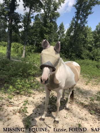 MISSING EQUINE- Lizzie, FOUND SAFE Near Delco, NC, 28436
