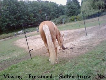 Missing Presumed Stolen-Arrow Near Ellensburg , WA, 98950